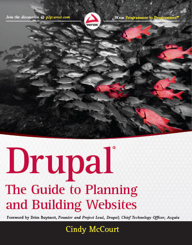 Drupal: The Guide to Planning and Building Website book cover